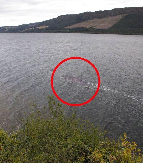La photo d'un touriste relance le débat sur l'existence du monstre du Loch Ness