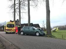 Automobiliste gewond na botsing tegen boom in Liempde