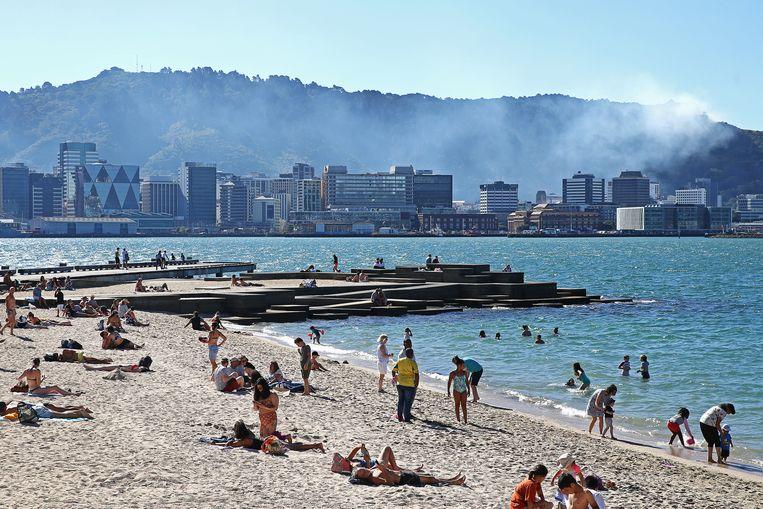 Badgasten in de Nieuw-Zeelandse plaatst Wellington zien de rook van een bosbrand in Wadestown. Beeld Getty Images