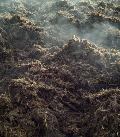 Brabant ziet mest als kans