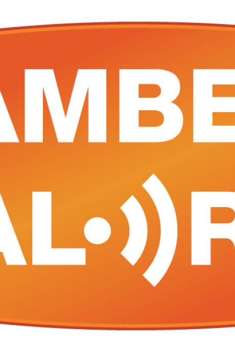 Negentig tips, waaronder de gouden, na Amber Alert 1-jarig jongetje uit Ede