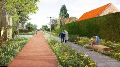 """Gemeente en ontwerpers stellen Masterplan Moerbeke 2050 voor: """"Lindenplaats omtoveren in restaurant- en terrasjesplein"""""""