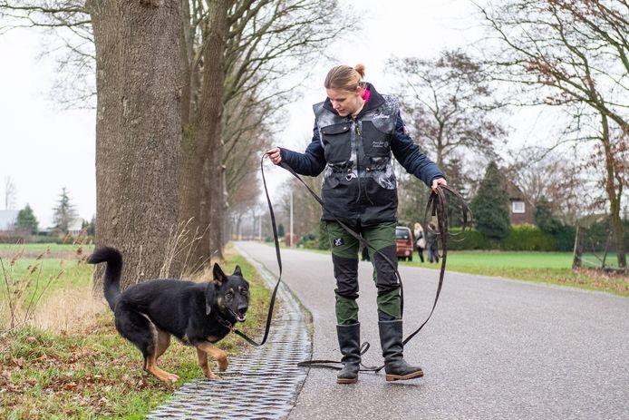 Astrid de Vries van Speurhonden Chaos en Ezra speurt met hond Choas naar de uit Den Ham vermiste hond Buddy, in januari 2019.