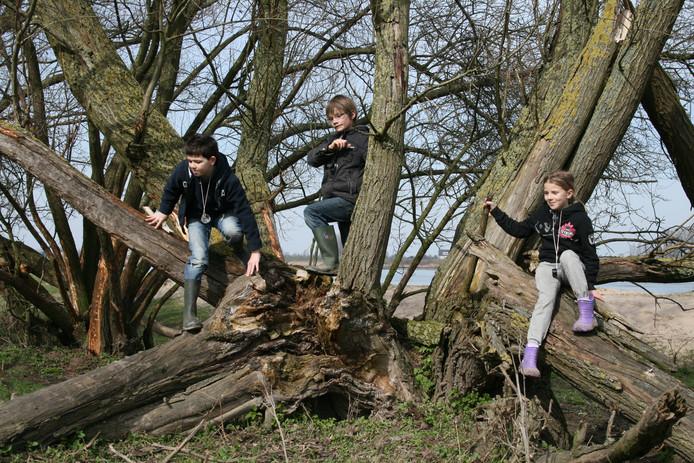 Tijdens de struintocht is er tijd om in de bomen te klimmen