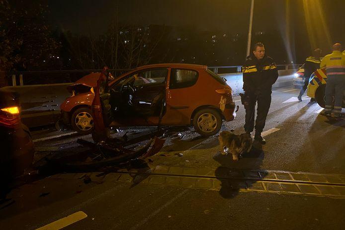 Personeel van de dierenambulance ontfermde zich over het hondje dat uit de rode auto kwam.