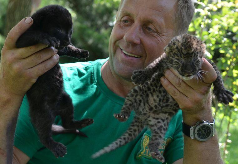 Taigan Safari Park-directeur Oleg Zubkov.