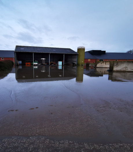 Grote hoeveelheid mest stroomt weg uit Gelderse silo: honderden kuubs op straat