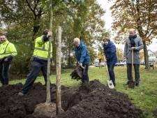 Boom voor Toos en Theo in Prominentenbos Oldenzaal
