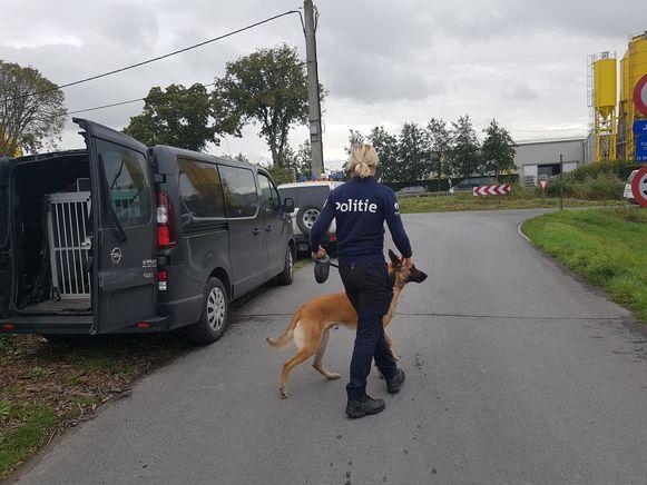 Een politievrouw van de hondenbrigade met een Mechelse herder.