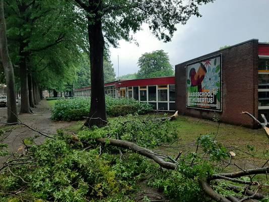 Boom omgewaaid op de Jagerslaan in Tilburg-West.