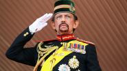 Nu Brunei homo's bestraft met steniging, kan Duitse onderscheiding voor sultan niet worden geschrapt