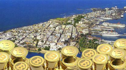 Bitcoinmiljardairs verhuizen naar 'Cryptopia', een eiland in de Caraïben waar ze hun fortuin kunnen laten exploderen
