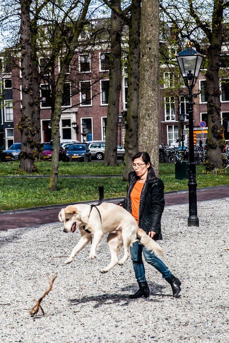Het Lange Voorhout. De brede straat met lindebomen is inspiratiebron voor het Berlijnse Unter den Linden Beeld Aurélie Geurts