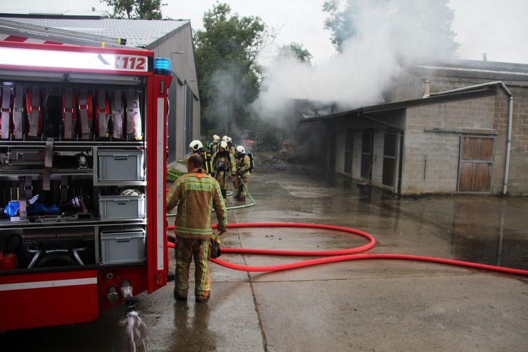 Tientallen brandweermannen waren urenlang in de weer om het brandende hooi te doven in het achterste deel van de paardenstal van Paardenhouderij De Steenhuyse in de Krommestraat in Steenhuize.