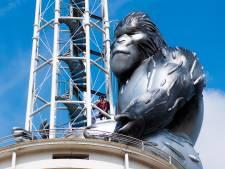 King Kong is even weg, dit is waarom
