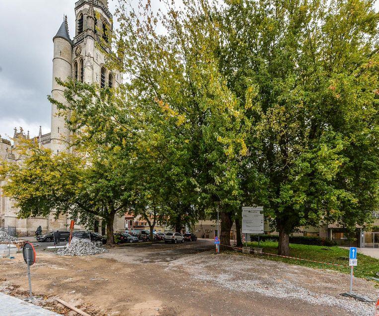 De bewuste bomen op het kerkplein.