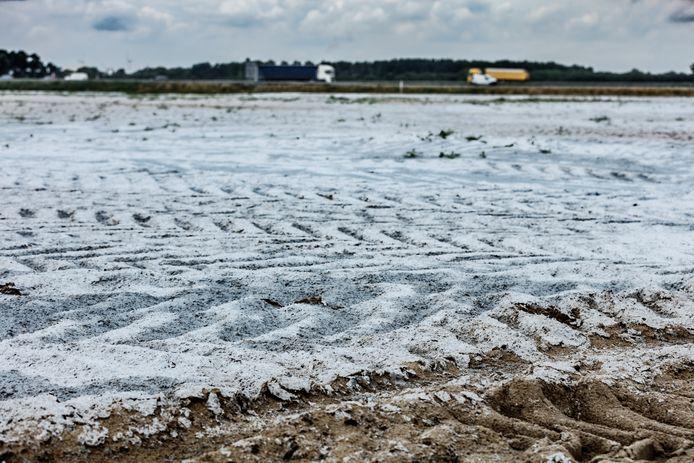 Op het zanddepot dat eerder voor het LPM nabij Moerdijk is weggelegd, is onlangs een afdeklaag aangebracht om verstuiving te voorkomen.