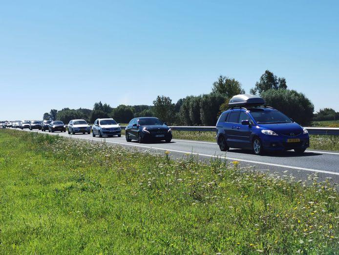 File op de N61 in Zeeuws-Vlaanderen.