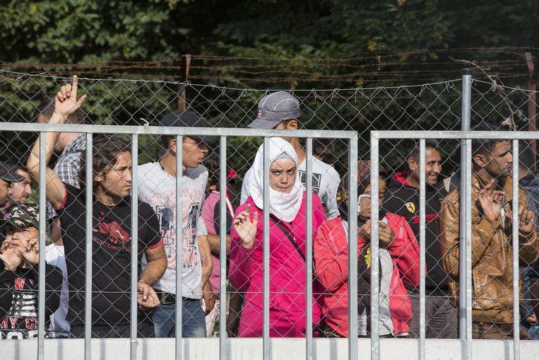 Vluchtelingen bij de grens tussen Servie en Hongarije. Beeld anp