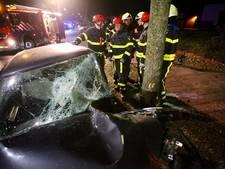Man rijdt tegen boom in Rijen en raakt bekneld