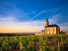 Oogsttijd! Dit zijn de leukste Franse wijnplaatsjes