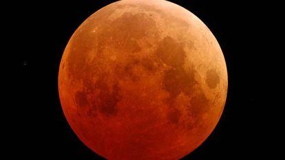 Morgenochtend kleurt maan felrood: bloedmaan, supermaan én totale maansverduistering