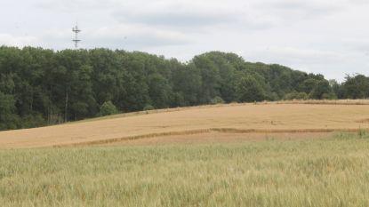 """Natuurpunt vraagt vernietiging van grootschalige ruilverkaveling: """"Onverantwoord risico op landbouw en natuur"""""""