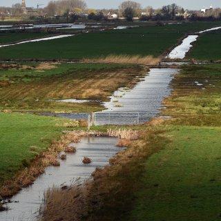 In Rijnland (tussen Gouda en Haarlem) valt echt wat te kiezen: koeien in de wei of moeras in de polder