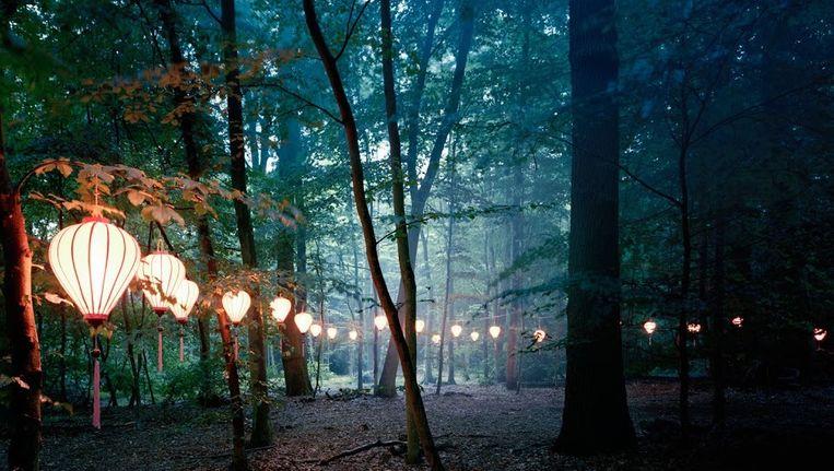 null Beeld Amsterdam Woods Festival