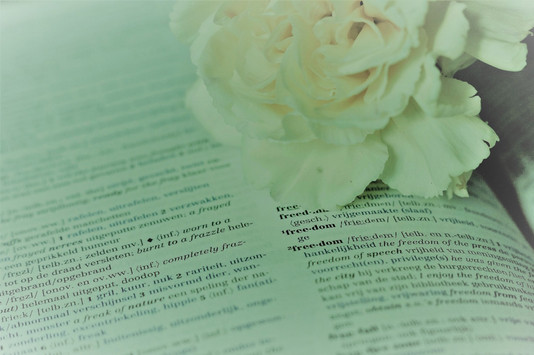 De anjer, de favoriete bloem van Prins Bernhard, wordt nu gebruikt als eerbetoon aan veteranen.