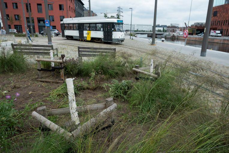 De pas geplante bomen op het eilandje zijn verwijderd omdat ze de droogte niet overleefden.