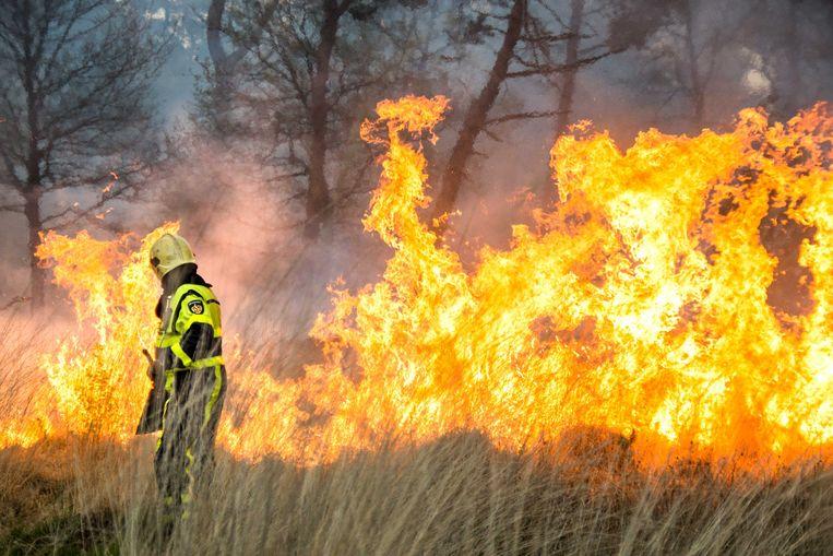 De maatregel moet natuurbranden voorkomen