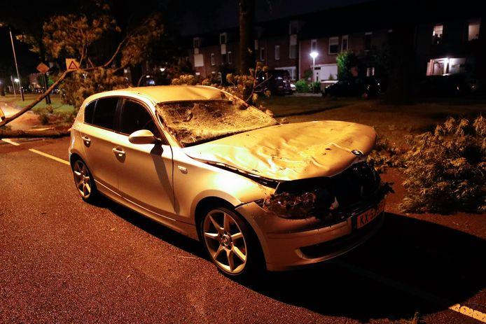Boom op auto aan Kasteellaan in Eindhoven
