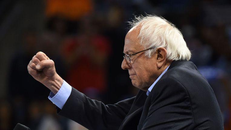 Bernie Sanders geeft niet op. Beeld null