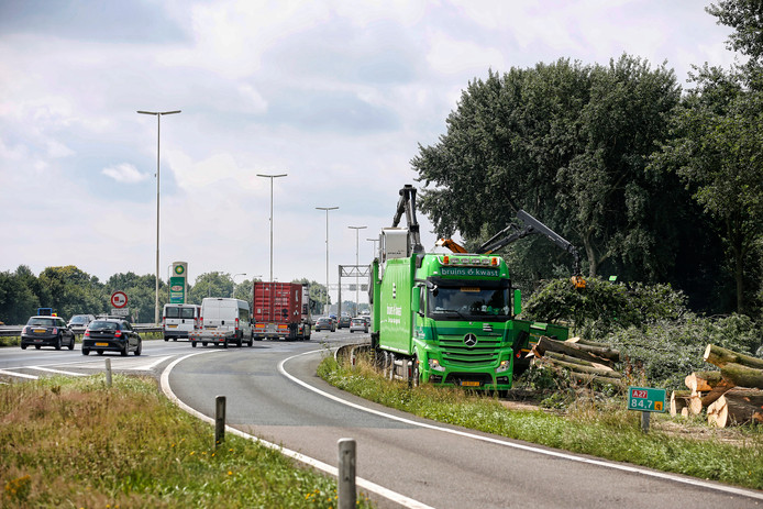 Bomenkap vorig jaar ter hoogte van afrit Maarssen op de A27 voor wegverbreding.