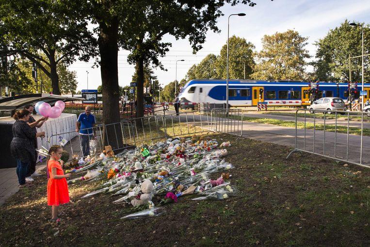ProRail heeft het spoor en de spoorwegovergang in Oss weer vrijgegeven. De treinen rijden weer en de spoorboom die beschadigde door het ongeluk met de stint waarbij vier kinderen om het leven kwamen, is vervangen.