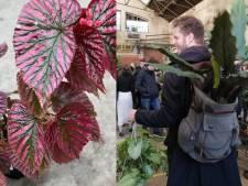 PUP: la jungle urbaine à succès revient à Bruxelles