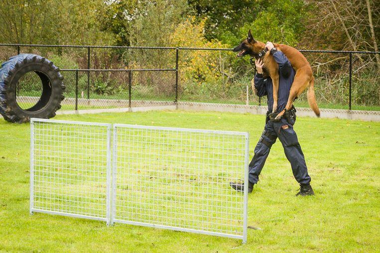 Een agent laat zijn hondje uit.