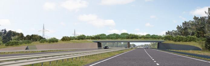 Een Artist's Impression van het toekomstige Ecoduct Oudste Grond over de A35 tussen Enschede en Hengelo