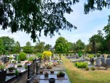 Discussie rondom 'terrorplantje' begraafplaats Delden laait op