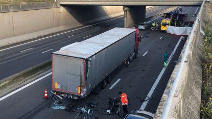 Range Rover-bestuurder raakt vrachtwagen op A12 en overlijdt ter plaatse