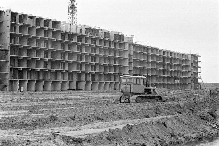 Tijdens de bouw van de flats in de Bijlmermeer in 1967 Beeld anp
