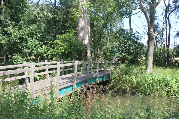 Het bruggetje, de Ossendrijverbrug, waar de verdachte de 14-jarige Romy Nieuwburg uit Hoevelaken zou hebben opgewacht, misbruikt en vermoord. Achter de struik loopt de sloot waar ze in gevonden is.
