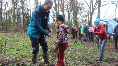 Geelstervallei blijft groeien: 1.000 bomen geplant en 5 hectare extra aangekocht