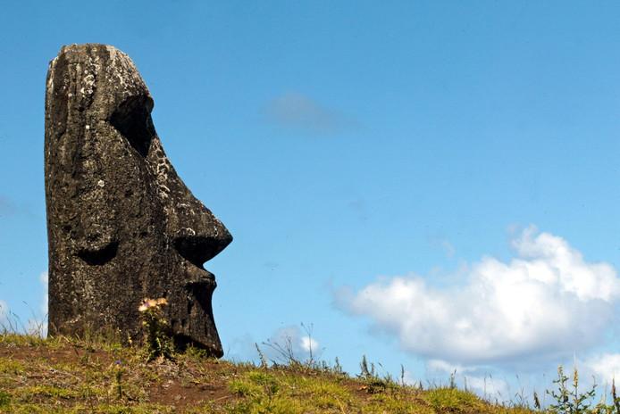 Een van de bijna duizend beelden op Paaseiland