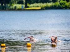 Zwemmen kan weer: Geen blauwalg meer in  Delftse Hout