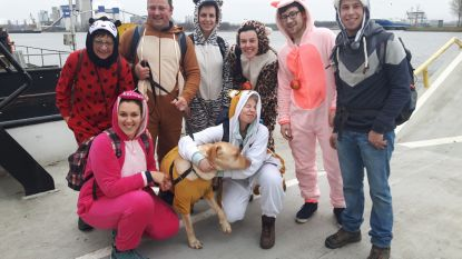 Sponsor hond Pippin en zamel geld in voor De Zonnegloed
