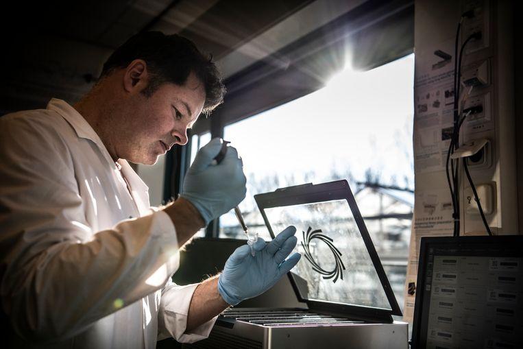 Bij KeyGene houden veel medewerkers zich bezig met het DNA van allerlei gewassen. Beeld Koen Verheijden
