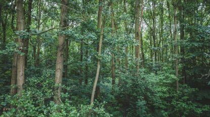 Help zondag klimaatbos op Smokkelpot aanplanten