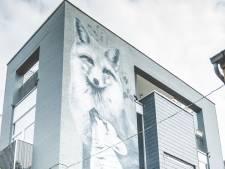 Gentse gevel bij 20 mooiste straat-kunstwerken van 2019